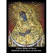 Mother of Mercy Chaplet Prayer Card - (50 Pack)
