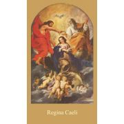 Bilingual Regina Caeli Prayer Card (Latin/English) (50 pack)