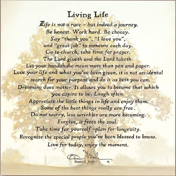 Living Life Life Is Not A Race By Bonnie Mohr Wall Plaque 18x18