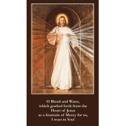Divine Mercy Prayer Card Wallet Size - (Pack of 50)