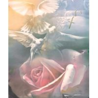 Purity - Art Print by Danny Hahlbohm