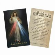 Divine Mercy Holy Card  Prayer On The Back