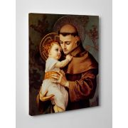 St. Anthony of Padua Gallery Wrapped Canvas Wall Art