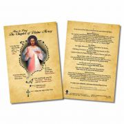How to Pray the Divine Mercy Chaplet Faith Explained Card - Pack of 50