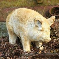 Baby Porker Pig 8in. - Fiber Stone Resin - Indoor/Outdoor Statue