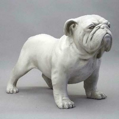 Bulldog 17 Inch Fiberglass Indoor/Outdoor Statue/Sculpture -  - F8490