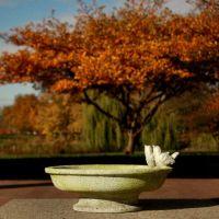 Finch Bird Bath 6in. Fiber Stone Resin Indoor/Outdoor Garden Statue