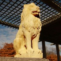Lion Guard - Fiber Stone Resin - Indoor/Outdoor Statue/Sculpture