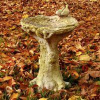 Nature's Small Birdbath - Fiber Stone Resin - Indoor/Outdoor Statue