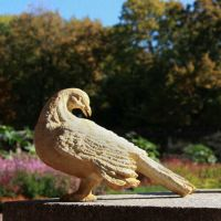 Preening Dove Fiber Stone Resin Indoor/Outdoor Garden Statue/Sculpture