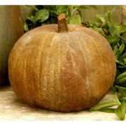 Pumpkin 11 Inch Fiber Stone Resin Indoor/Outdoor Statue/Sculpture