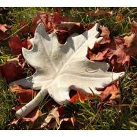 Maple Leaf 14in. Fiberglass Indoor/Outdoor Garden