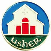 Usher Enameled Lapel Pin 1/4in. Post & Clutch Back - (Pack of 2)