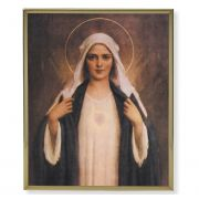 Chambers: Immaculate Heart Of Mary 8x10in Gold Framed Plaque (2 Pack)