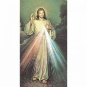 The Divine Mercy 2 x 4 inch Holy Card - (Pack of 100)